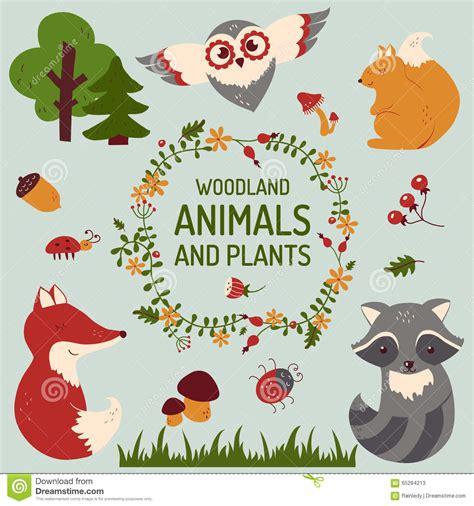 cute animals in boats kids design elements set stock cute animals set vector illustration stock vector