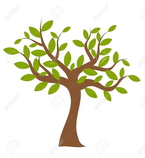 trees clipart tree with leaves clipart 101 clip