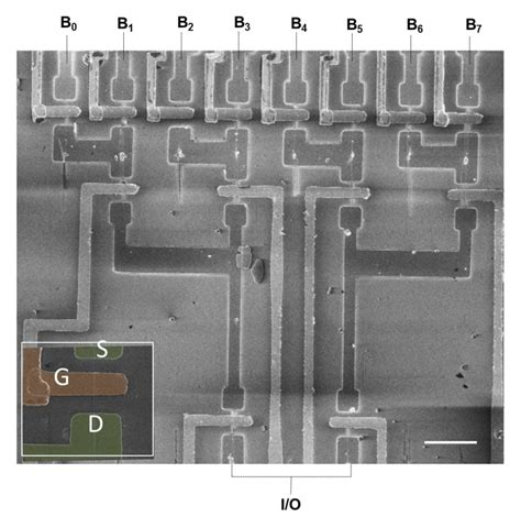 integrated circuit sem image guided growth of nanowires leads to self integrated circuits chemistry news features and
