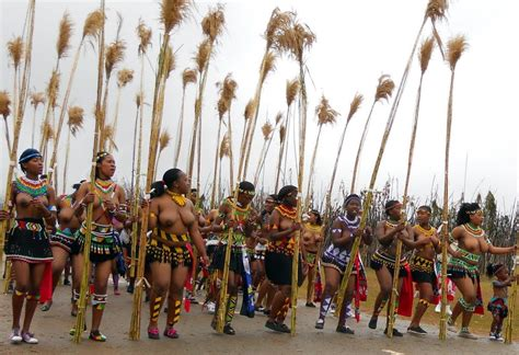 w w w lmage princess swaziland com the gallery for gt swazi princess reed dance