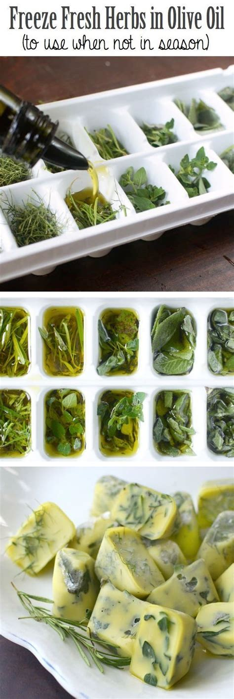 freeze fresh herbs in olive oil to use when not in season pictures photos and images for