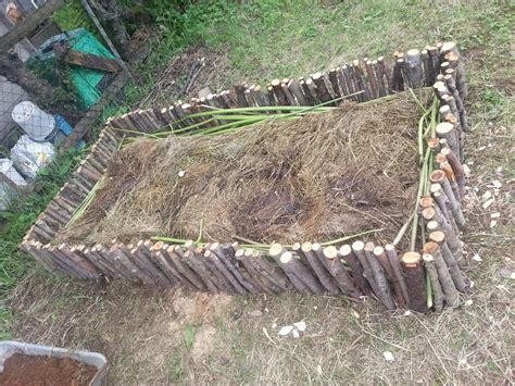 cheap raised beds cheap raised beds made from local sticks nibiru pithouse society