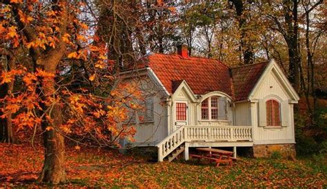 fall house fall colors beautify modern houses and landscape