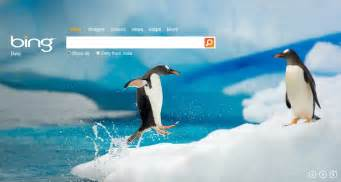 As the regular bing users see it changes a new background image