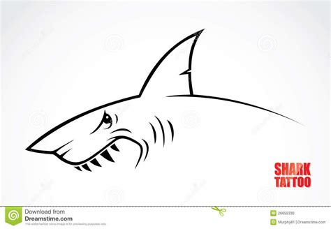 shark tattoo stock photo image 26655330