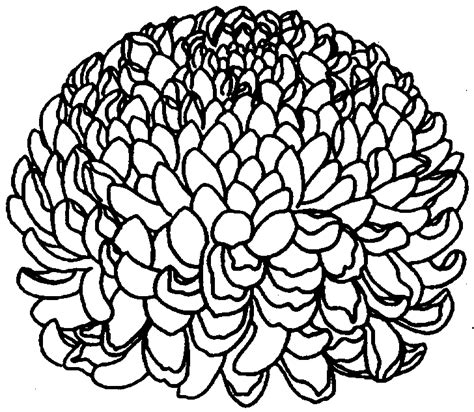 coloring pages intermediate free intermediate pages coloring pages