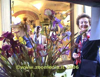 vetrine illuminate via condotta centro storico zoomedia it