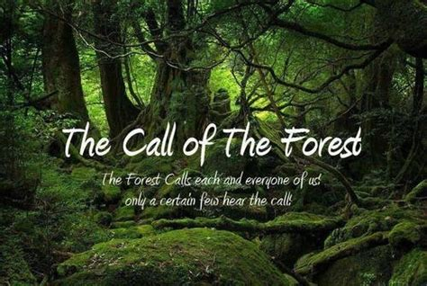 The Forest Would Be A Place Quote Forest Quotes Image Quotes At Relatably