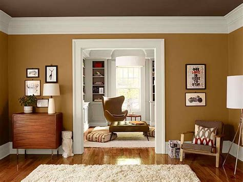 warms living rooms paint color appealing picture above
