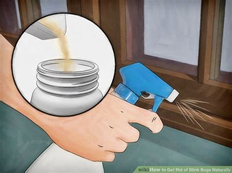 how to get rid of spiders in bedroom how to get rid of spiders in the house naturally house