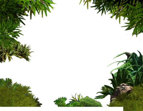 jungle psd vector graphic vectorhqcom