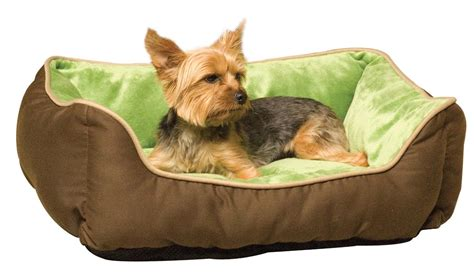 beds for small dogs small dog beds we pick 5 of the best