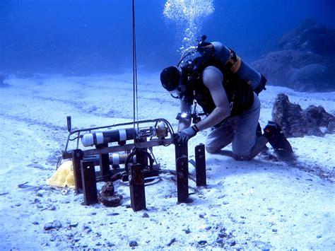 Alat Pancing Laut Yang Bagus 5 jurusan kuliah kelautan ini ternyata punya prospek kerja yang bagus educenter