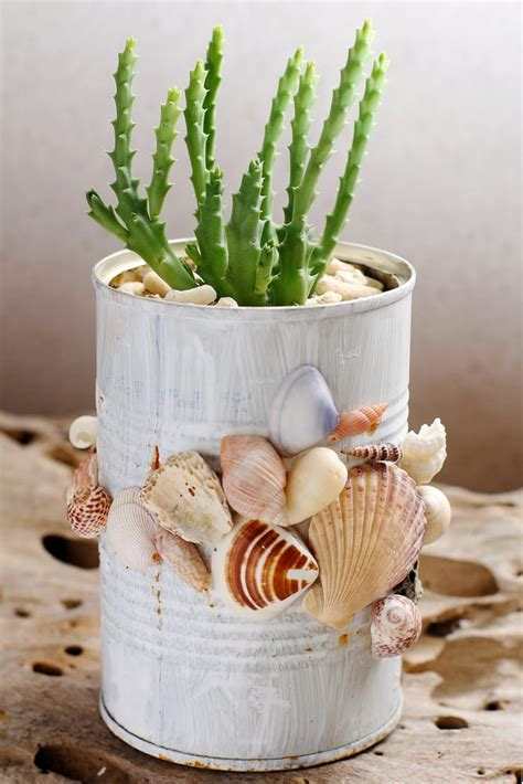 vasi con conchiglie riciclo creativo conchiglie non sprecare