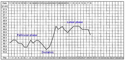 basal body temperature  cervical mucus  infertility