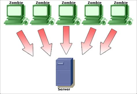 zombie network tutorial dos attack ddos ping flood smurf fraggle syn flood teardrop