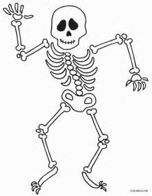 skeleton coloring page free coloring pages of human skeleton