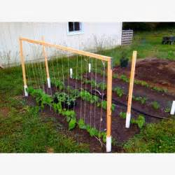 trellis support green bean trellis made easy garden ideas