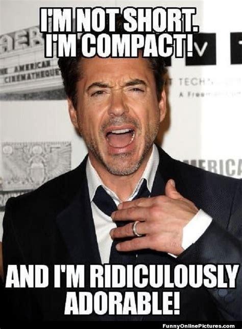 Robert Downey Jr Meme - robert downey jr meme picture