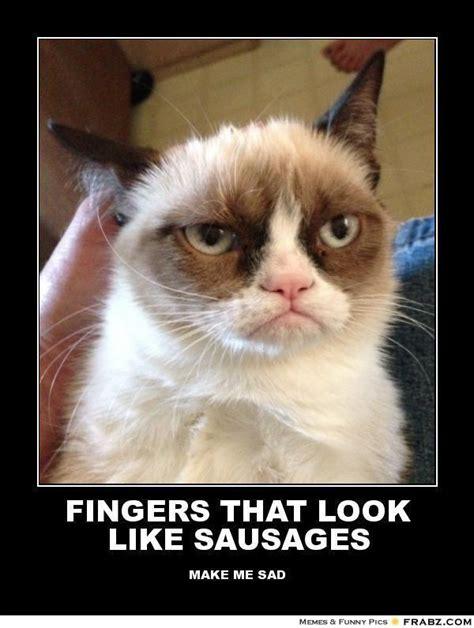 Middle Finger Cat Meme - fingers that look like sausages grumpy cat meme