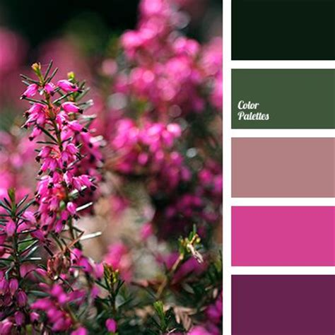 colors that match with purple 17 best ideas about pink color palettes on pinterest