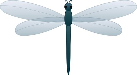 dragonfly clipart blue dragonfly free clip