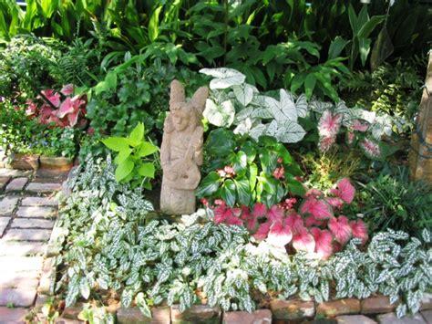 Garten Schatten Welche Pflanzen by Garten Mit Schatten Pflanzen Welche Arten Eignen Sich