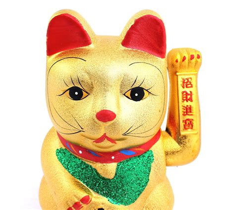 chinese cat swinging arm chinese cat swinging arm 28 images swinging arm