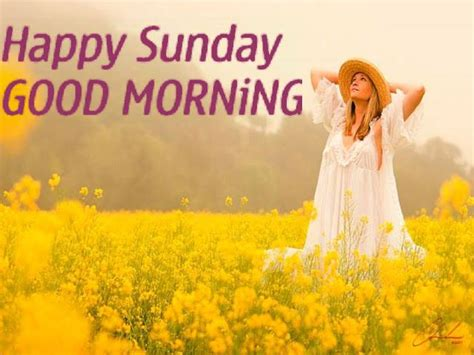 happy san day morning wishes on sunday pictures images page 2