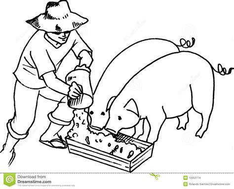 Philippine House Plans hog feeding stock images image 10052774