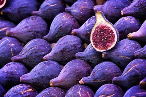 fig fruit purple violet image 269002 on favim com