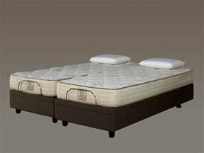 sealy beds sealy adjustable king bed designer series beds