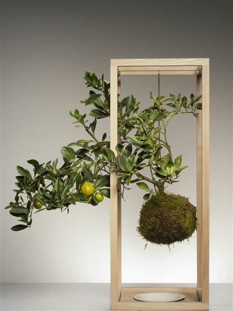 Bathroom Ideas For Men kokedama schwebende pflanzen pflanzenfreude