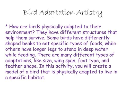 evolution how adapts to a changing environment with 25 projects build it yourself books bird adaptation artistry evolution