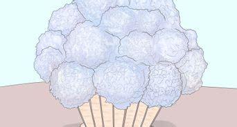 come curare l ortensia in vaso come potare l ortensia 9 passaggi illustrato