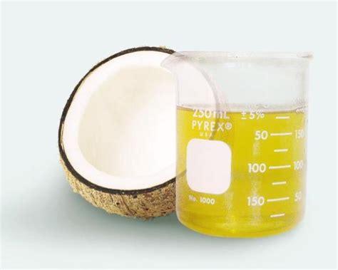 membuat minyak kelapa fermentasi pembuatan minyak kelapa dengan fermentasi compaqall