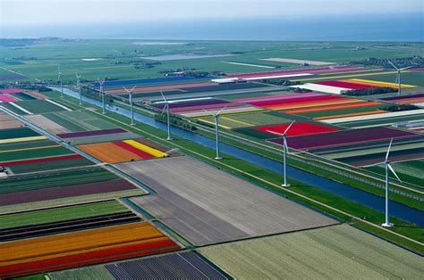 netherlands tulip fields aerial photographs of tulip fields in the netherlands by
