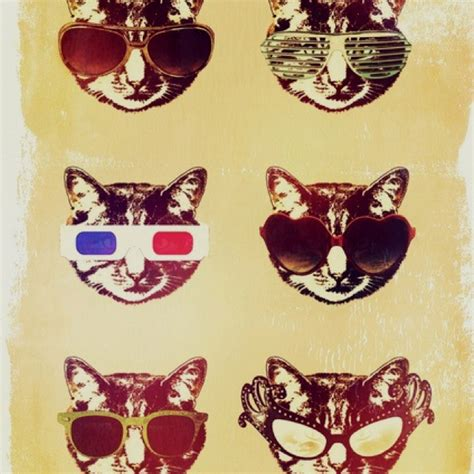 hipster tumblr oh lindo pinterest kitty cats pinterest discover and save creative ideas