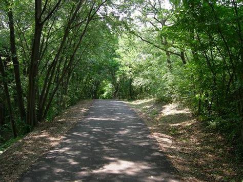 ic volta mantovana parco mincio escursioni a piedi o in bicicletta