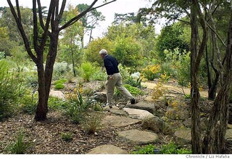 San Francisco Botanical Garden At Strybing Arboretum Name Candlestick Isn T The Only Park Changing Its Name The Venerable Strybing