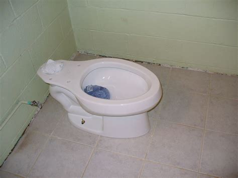 Closet Flange High by Toilet Flange Ideas The Homy Design
