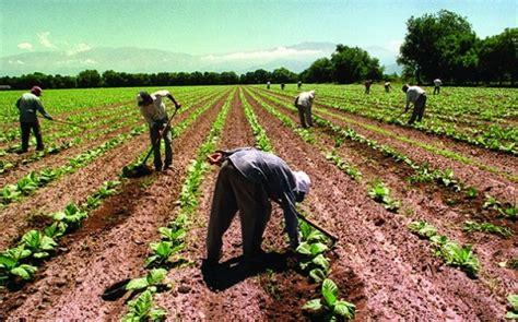 paritarias de trabajadores rurales aumento salarial del 22 para trabajadores rurales