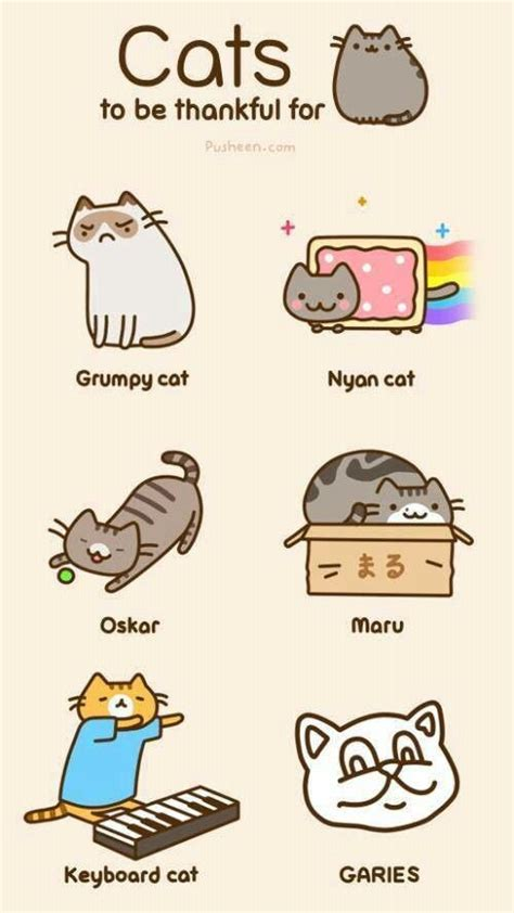 Pusheen Memes - famous internet cats brought to you by pusheen kawaii