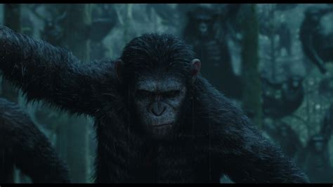 3d The Apes Of The Planet Of The Apes 3d Review Doblu
