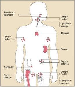 Pathogen Detox by Lym Lymph Tea
