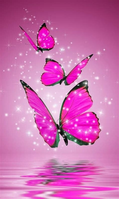 pink wallpaper with butterflies pink and black butterfly wallpapers currently 2 50 5 1 2