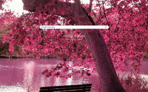 pink leaves google theme