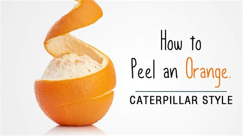 how to peel an orange easy way to peel mandarin oranges in a caterpillar style youtube