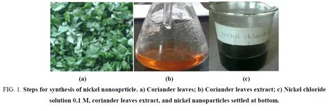 biosynthesis of nickel nanoparticles using leaf extract of biosynthesis of nickel nanoparticles using leaf extract of