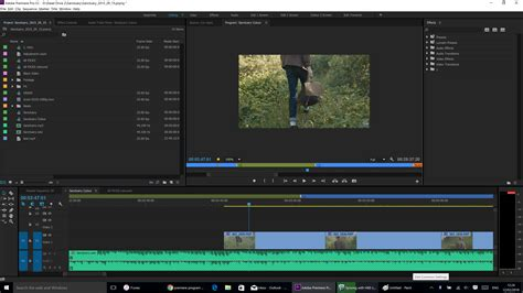 adobe premiere pro make video fit screen 4k screen program monitor scaling too small adobe